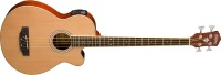 Washburn AB5K Acoustic Bass