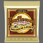 ERNIE BALL Earthwood Medium-Light