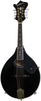 Washburn Black M1 Mandolin