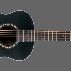 Washburn Apprentice Mini GA Black